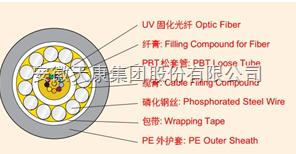GYXTY-12B1天康光纤电缆