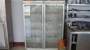 廠家直銷廚房設備不銹鋼雙門消毒柜