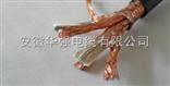 DJYPVP 3*3*0.5计算机电缆