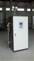 LDR0.05-36KW电蒸汽发生器