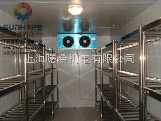 超低温冷库上海超低温冷库安装