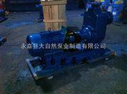 耐酸自吸泵