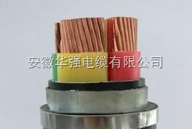 zr-yjv-1kv-2*240 电力电缆