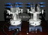 微型高压平行反应釜