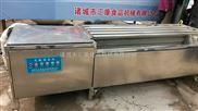 MQX-1500型-毛刷清洗机  红薯清洗机  桃子清洗机  莲藕清洗机