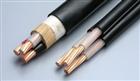 高温电缆 AF250-1*95