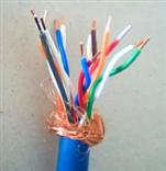 IA-DJF4F46P 高温防腐计算机电缆