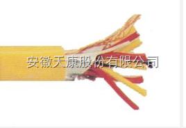DJFFP2R-10*2*1.5高温计算机电缆