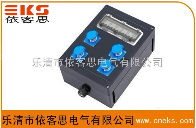 FCX防水防尘防腐电源插座箱-依客思品质保证