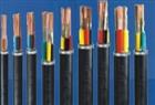 WDZ-JYJ-150 1*95环保电缆