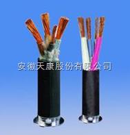 SBH-3*2.5橡套软电缆