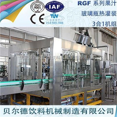 RGF 14-12-53000-5000瓶每小时玻璃瓶果汁饮料灌装生产线