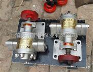 不锈钢微型齿轮泵参数咨询泊头宝图泵业,专业选型