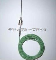 WRNK-191S补偿导线式铠装热电偶