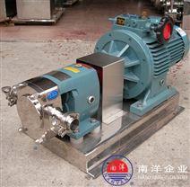 转子泵 内环式高粘度输送泵