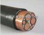 ZR-BPYJVPX13R-3*70+3*16变频器电缆