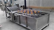 定做-hc-6000蔬菜清洗機\大棗清洗機\中草藥清洗設備