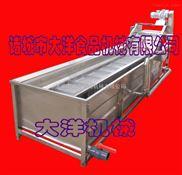 水果清洗机|蔬菜清洗设备|中草药清洗机