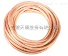 TJRX TJR- 1*35镀锡软铜绞线