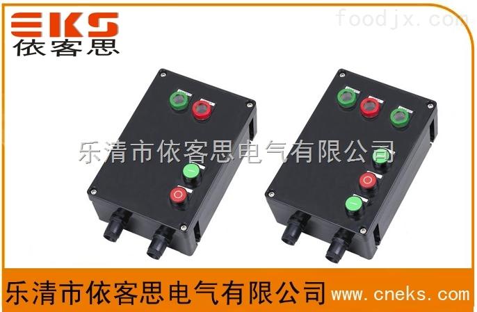 依客思专业生CBD-20A防水防尘防腐磁力启动器