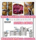 丽水鲜花饼机,做玫瑰鲜花饼的机器,免费上门教技术