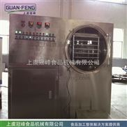 小產量果蔬冷凍干燥設備