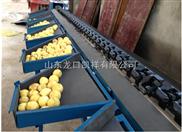 凯祥选果机厂价供应水果分选机 果蔬重分选机 水果分拣选果机