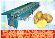 马铃薯重量分选分级机 马铃薯自动选果机