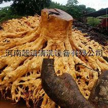 500公斤根雕剥树皮清洗机