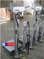 广西 -TCS-XC-A电子台秤