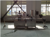 DGC-12易拉罐颗粒灌装生产线厂家